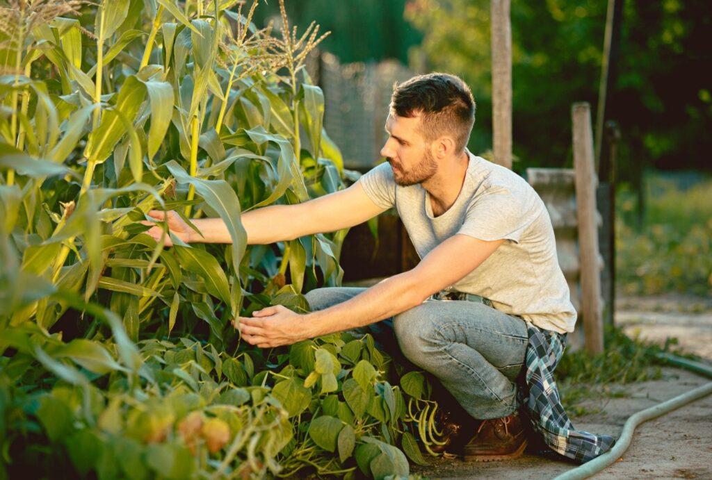 permacultura italia